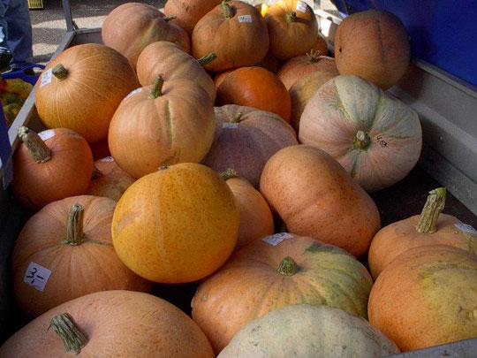 Schwabstedter Bauernmarkt 2003
