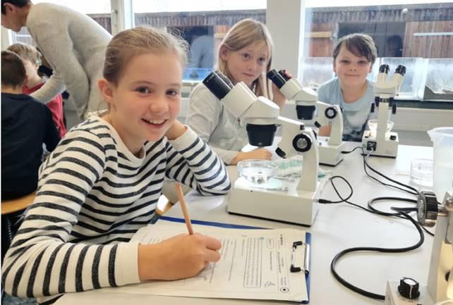 In den Ferien zum Wattenmeerforscher werden